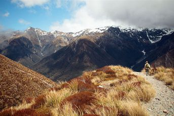 Arthur's Pass walking track.