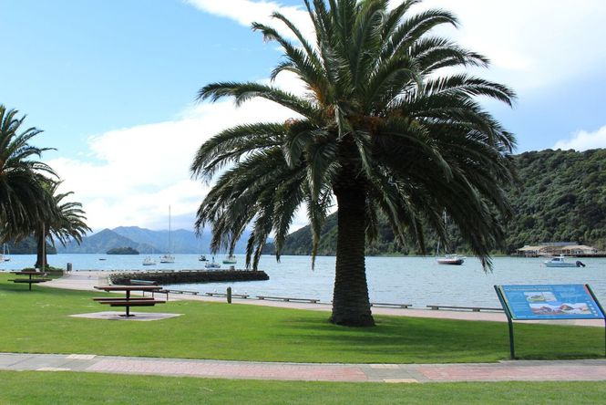 The Picton Foreshore.