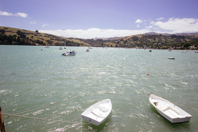 Boats on the water at Akaroa Harbour.