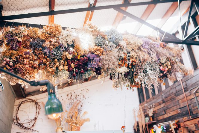 Dried flowers hanging from a ceiling at The Flower Crate.