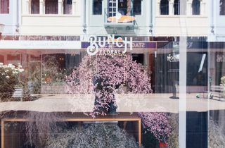Signage on a glass window with pink blossom reflection.