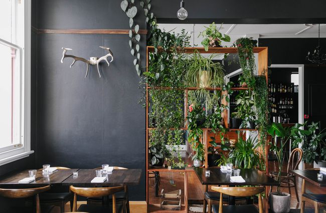 Dining area with plant wall.