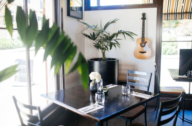 A corner of the restaurant with a palm a table and a guitar.