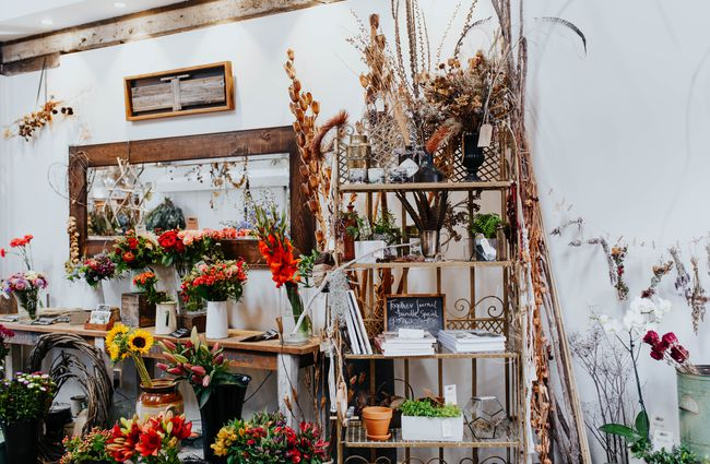 Dried and fresh flowers in white vases on shelves.