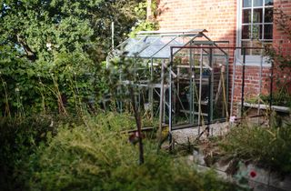 A glasshouse in the garden.