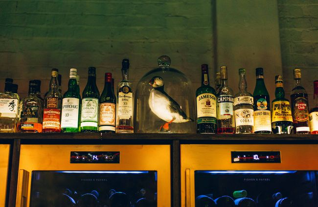 Shelf of spirits with a puffin on top in a glass dome.