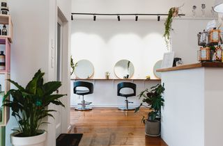 Greenery and wood floors at Refuge Hair Boutique, Wellington.