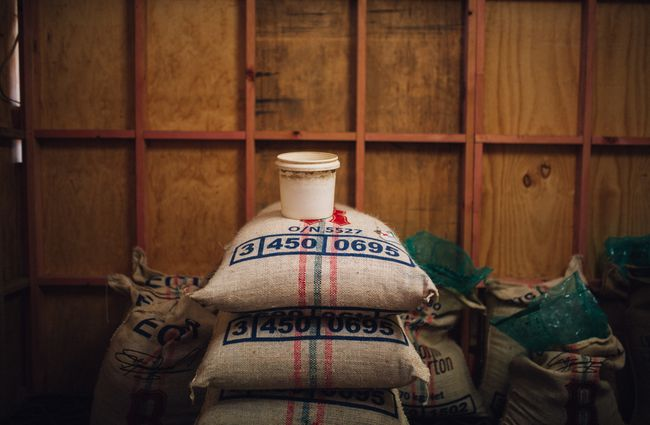 Sacks of coffee beans stacked.