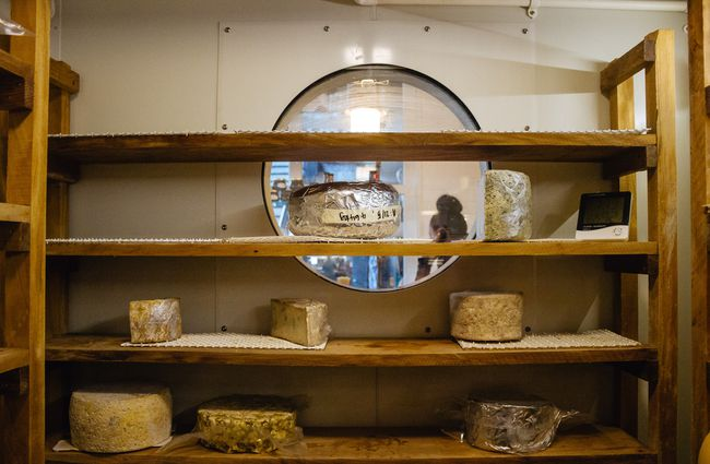 Ageing cheese on display.