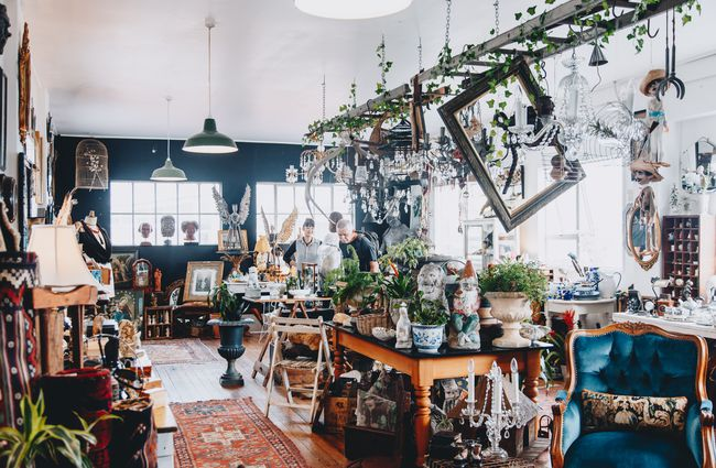 The Quaint and the Curious, Christchurch, NZ - Neat Places